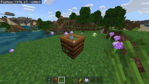 Composter in Minecraft - 3
