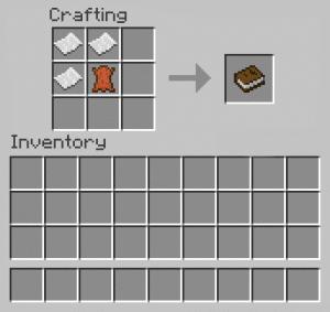 Book In Minecraft - 1